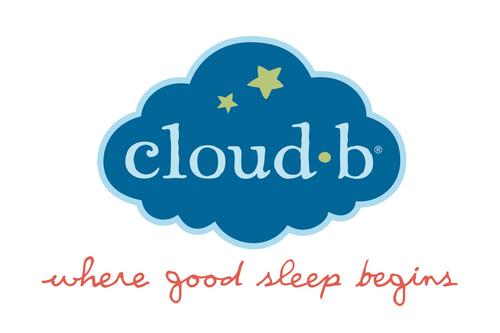 cloudb logo 2012